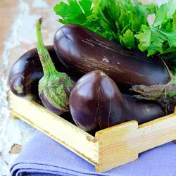 Doğal Tarladan Patlıcan